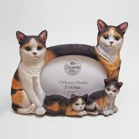 Calico Cats Photo Frame Holds one 6x4 Picture