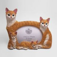 Orange Tabby Cats Photo Frame Holds one 6x4 Picture